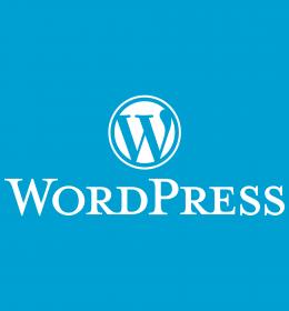 izrada sajta u wordpress
